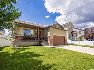 Riverton Single Family Home For Sale: 4947 W Berry Creek Dr S