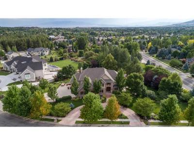Alpine Single Family Home For Sale: 467 N 1100 E