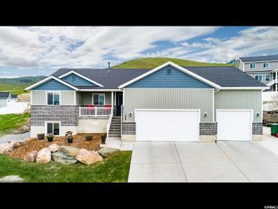 Hyde Park Single Family Home For Sale: 544 N 800 E