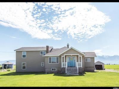 Lewiston Single Family Home For Sale: 301 S 2400 W
