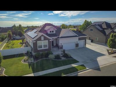 Syracuse Single Family Home For Sale: 792 S 2325 W
