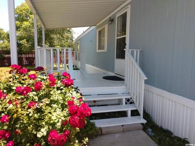 Midvale Single Family Home For Sale: 117 W Blisswood Cir S
