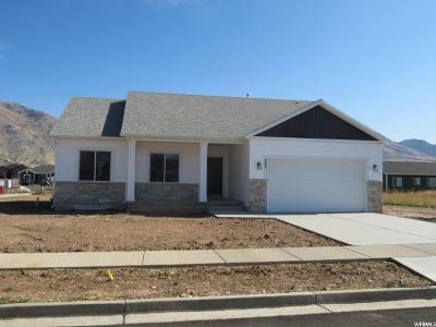 Hyrum Single Family Home For Sale: 495 S 720 E