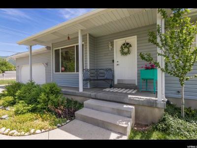 Salem Single Family Home For Sale: 315 W 400 S