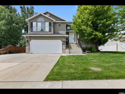 Orem Single Family Home For Sale: 1867 N 240 W