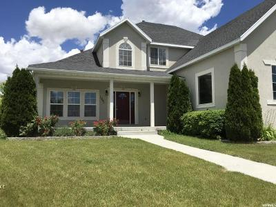 Eagle Mountain Single Family Home For Sale: 1301 E Falcon Ln