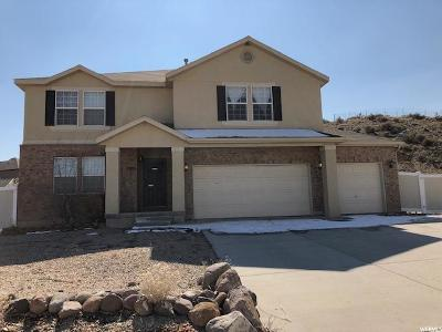 Herriman Single Family Home For Sale: 7009 W Tracy Loop Rd S
