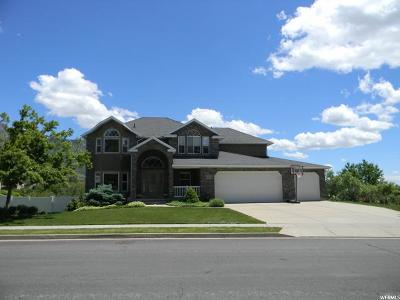 Layton Single Family Home Under Contract: 2252 Canyon View Dr
