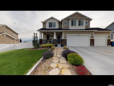 Pleasant Grove Single Family Home For Sale: 328 S 1150 E