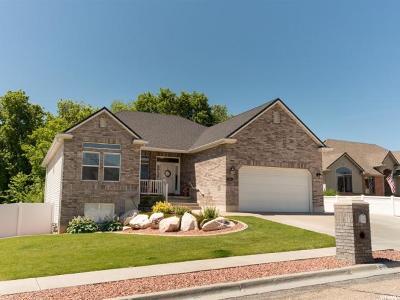 Riverdale Single Family Home Backup: 879 W 3950 S