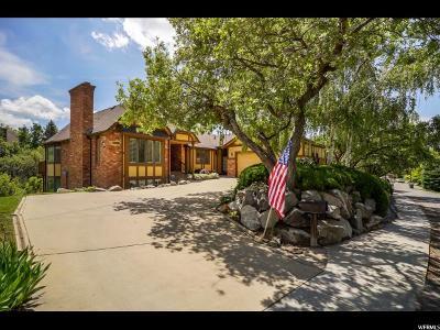 Ogden Single Family Home For Sale: 1699 E Meadow Creek Ln S