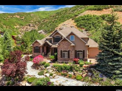 Ogden Single Family Home For Sale: 5848 S Spring Canyon Rd
