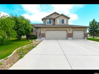 Tremonton Single Family Home For Sale: 831 W 900 S