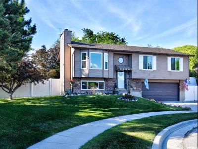 Riverton Single Family Home For Sale: 2578 W Benchland Cir