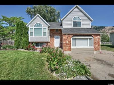 North Ogden Single Family Home Under Contract: 1798 N 700 E