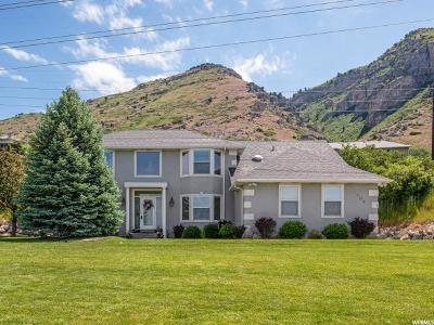 Provo, Provo Canyon Single Family Home For Sale: 3904 Foothill Dr