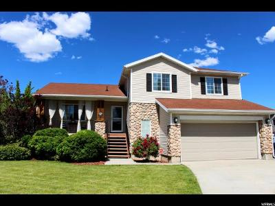 West Jordan Single Family Home For Sale: 9155 S 4610 W