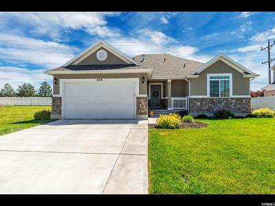 Clearfield Single Family Home Under Contract: 808 S 1025 W