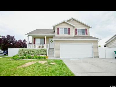 Provo, Provo Canyon Single Family Home For Sale: 2845 W 100 N