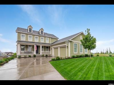 South Jordan Single Family Home Under Contract: 10447 S Millerton Dr