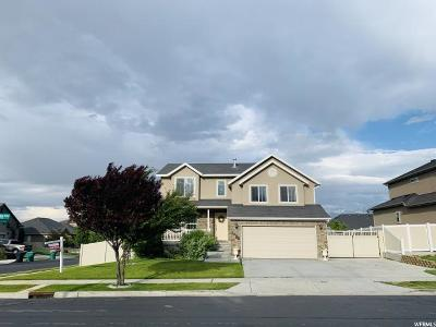 West Jordan Single Family Home For Sale: 8229 S Sky Meadow Dr W