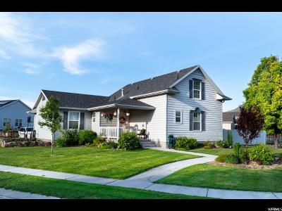 Eagle Mountain Single Family Home For Sale: 1805 E Cedar Trails Way S