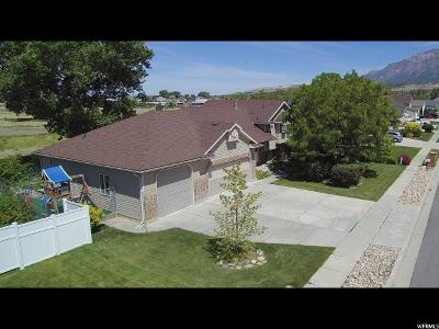 North Ogden Single Family Home Under Contract: 1929 N 150 E