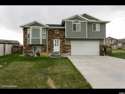 Tremonton Single Family Home Under Contract: 429 W 225 S