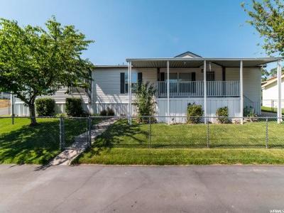 Layton Single Family Home For Sale: 163 Sunrise Dr