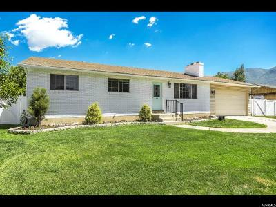 American Fork Single Family Home For Sale: 485 E 520 N