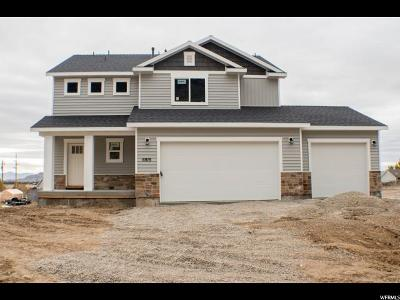 Single Family Home For Sale: 6915 N 2275 W