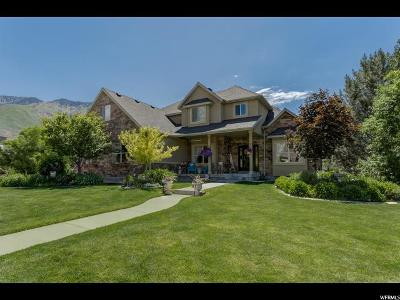 Alpine Single Family Home For Sale: 638 N Grove Dr