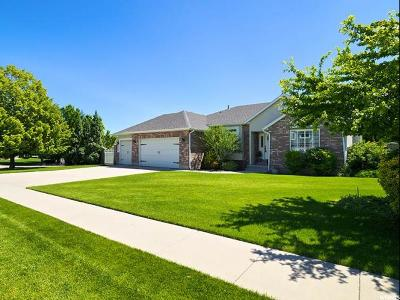 South Jordan Single Family Home Under Contract: 9843 S Sterling Park Cir