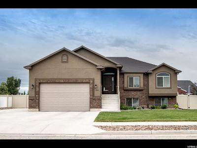 Tremonton Single Family Home For Sale: 1035 W 275 S