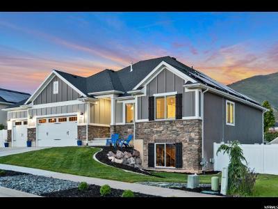 Layton UT Single Family Home For Sale: $484,900