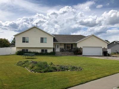 Preston Single Family Home For Sale: 580 S 4th E