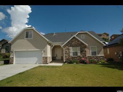 Eagle Mountain Single Family Home For Sale: 4597 E Silver Crk