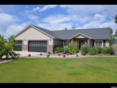 Single Family Home For Sale: 16605 N 18000 W