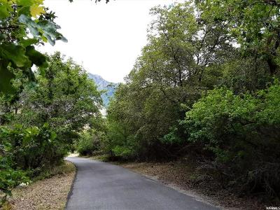 Alpine Single Family Home For Sale: 1325 N Fort Canyon Road E