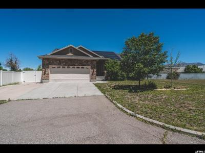 Clearfield Single Family Home For Sale: 1055 S 1650 E