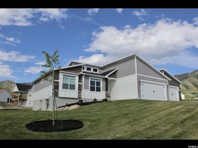 Hyde Park Single Family Home For Sale: 977 Juniper