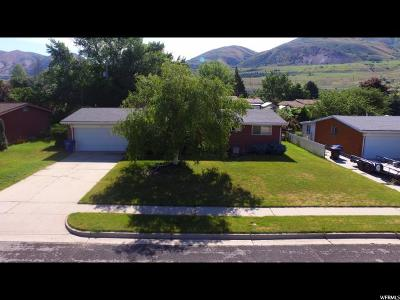 Single Family Home For Sale: 965 S Grandview