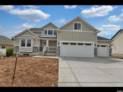 South Ogden Single Family Home Under Contract: 5963 S Willow Wood Ln E #12
