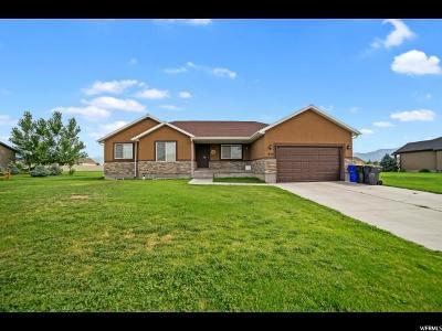 Grantsville Single Family Home For Sale: 832 E Deep Wash Rd S