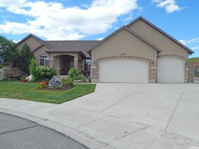 Eagle Mountain Single Family Home For Sale: 8654 N Chase Cir
