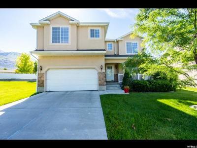 Pleasant Grove Single Family Home For Sale: 686 E 950 S