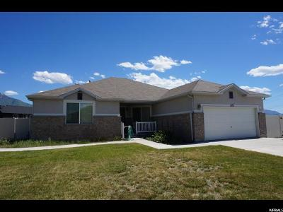 Springville Single Family Home For Sale: 1173 W 1500 S