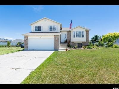 Single Family Home For Sale: 380 E Riverview Dr S