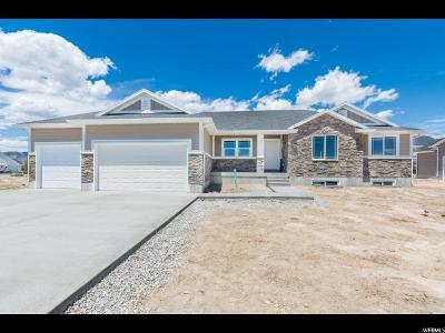 Tremonton Single Family Home For Sale: 1173 E 250 S