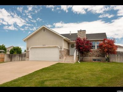 Clinton Single Family Home Under Contract: 698 W 1900 N